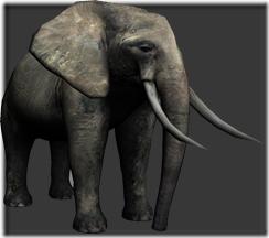 File:Elephant thumb.png