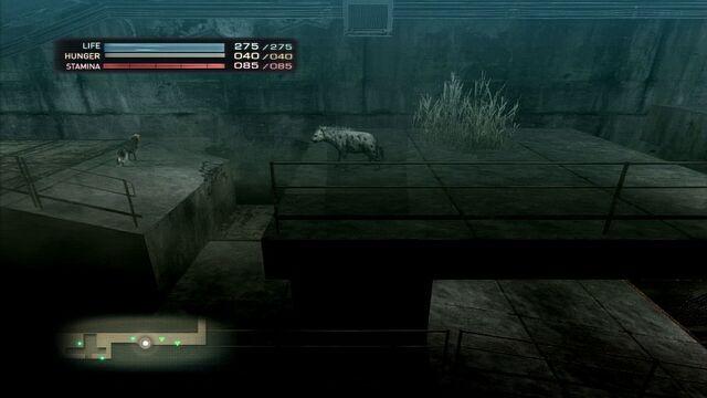 File:Sewer.jpg