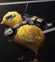 Chick Power Suit