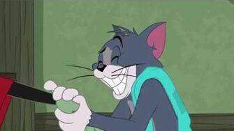 Tom's Favorite Blanket Tom & Jerry Cartoon World
