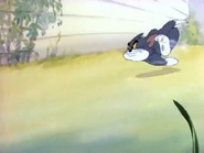 Sufferin' Cats! - Tom running after Jerry