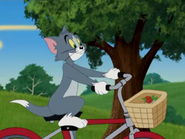Spaced Out Cat - Tom riding on his bicycle