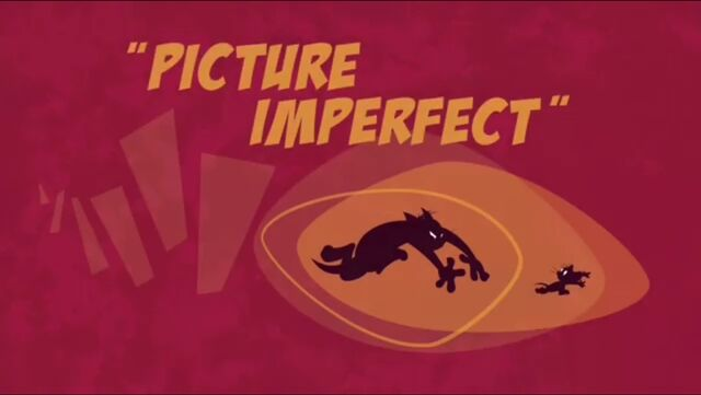 File:PictureImperfect.jpg