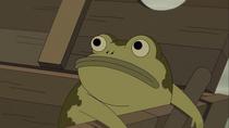 Gregs frog 2944