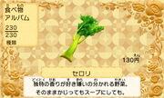 Celery jp