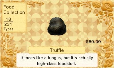 File:Truffle.JPG