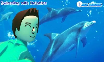 MiiNews Dolphins