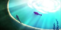 Shizuku's Goldfish