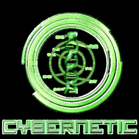 File:Cyberneticwiki.png