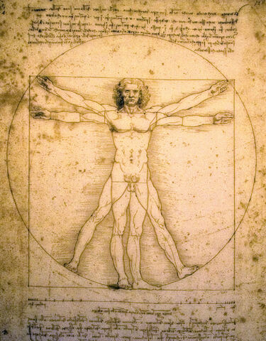 File:Vitruvian Man.jpg