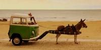 Donkey Wagon