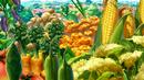 Vegetable Sky...... Eps 46