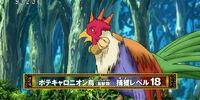 Potacarronion Bird