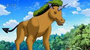 Devil Plant Horse losing it's armor