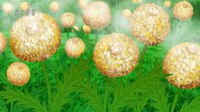 Sesame Seed Dumplions Eps 58