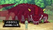 Barara Gator