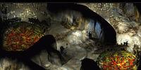 Curst Underground