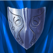 File:Shield master ability icon.png