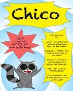 TDC2 Chico