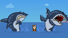 Wicked witch scares sharks