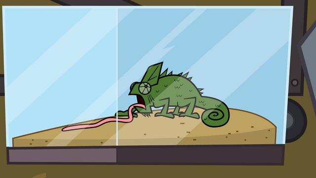 File:ChameleonTopDog.png