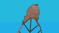 Dj tags walrus