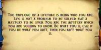 Wisdom Scrolls