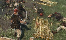 Rigal plantation raid