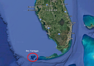 Dry Tortuga location