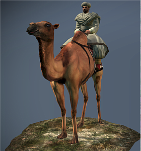 Camel Warriors NTW