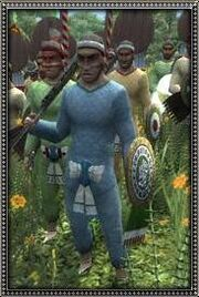 Mayan Temple Guard