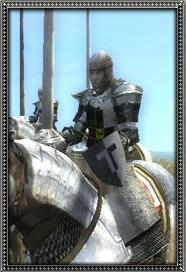 Teutonic General's Bodyguard (Late)