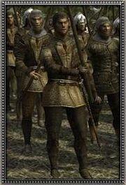 Sicilian Halberd Militia