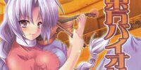 東方バイオリン4