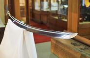 Sword higekiri3