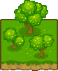File:Wattle Trees Tile Icon.png
