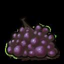 Inv Grapes-sd