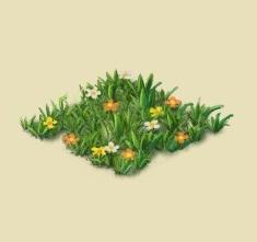 File:Wildflowers1.jpg