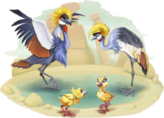 Black Crowned Crane Family