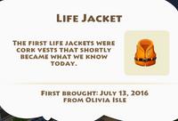Life Jacket Artifact