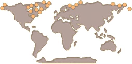 Walrus Map