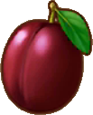 File:Plum.png