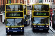 Dublin Bus buses