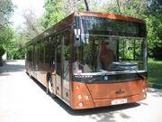 Low-floor bus MAZ 203