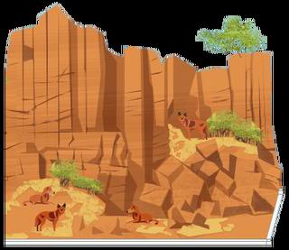 Dingo Kliffen.png