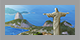 Theme Rio Small.png