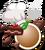 Macaron 15