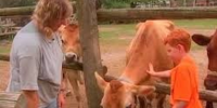 This is daniel milking a cow