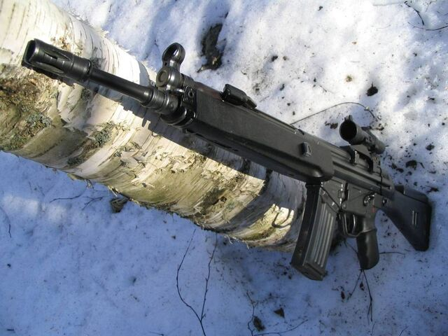 File:Heckler and Koch HK33.jpg