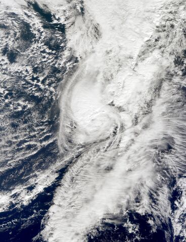 File:Hurricane Shary 2010-10-30 1424Z.jpg